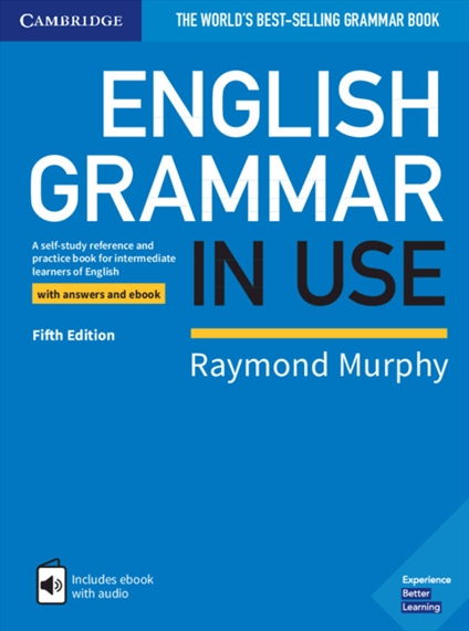 Phrase very best grammar books for adults pity, that