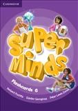 Super Minds 6 Flashcards